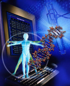 Mendel_genome dsfd