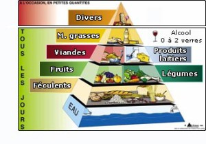 repas-equilibré dsds