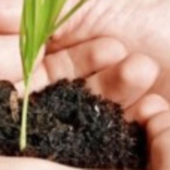 Logo du groupe Jardinage Écolo